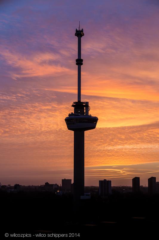 Rotterdam Awakes